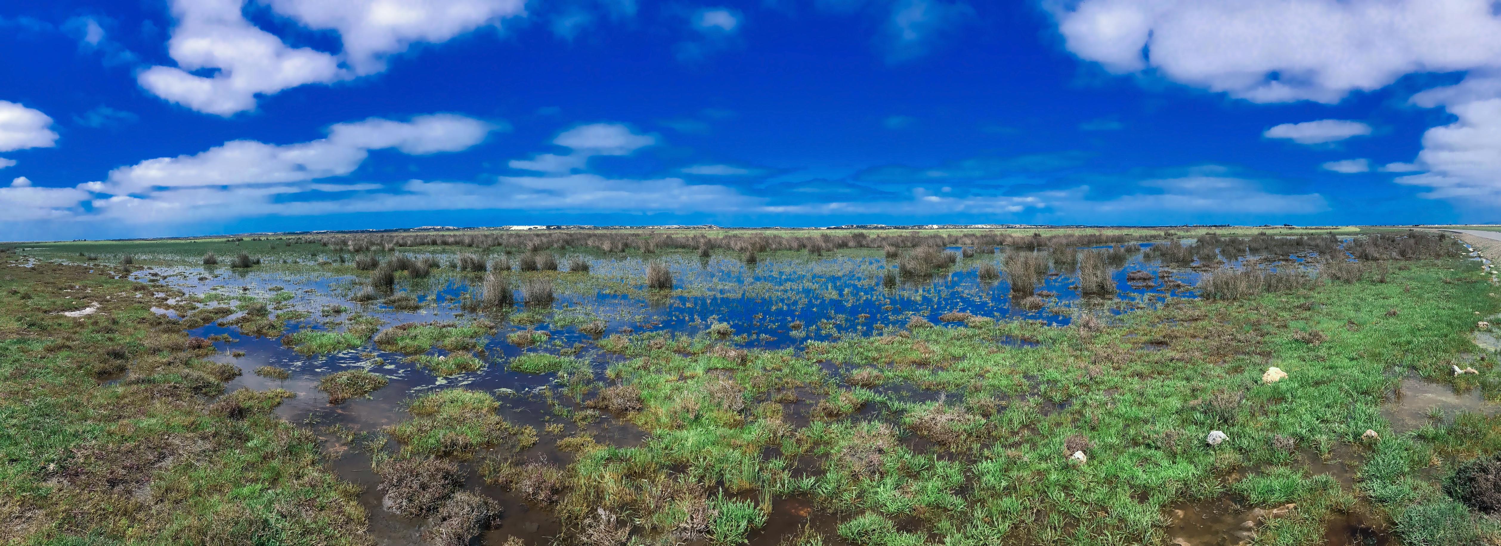 mundoo-wetland-hdr